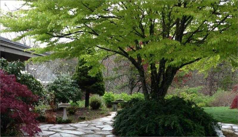 Guest house gardens