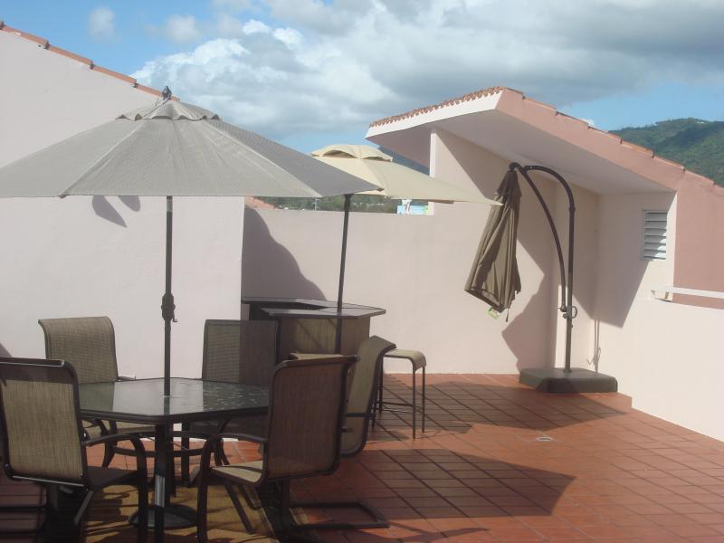 Terrazza privata con zona pranzo all'aperto, Bar e griglia in acciaio inox