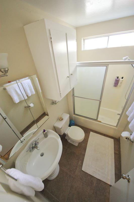 Salle de bains avec tout ce que vous devez--serviettes, savon, shampooing & revitalisant, serviettes sèche et extra capillaires trop.
