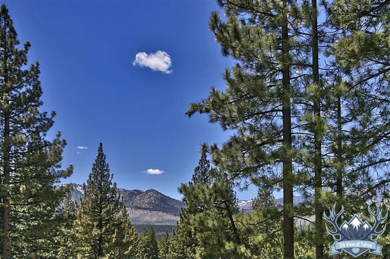 Vue de wapiti à Tahoe