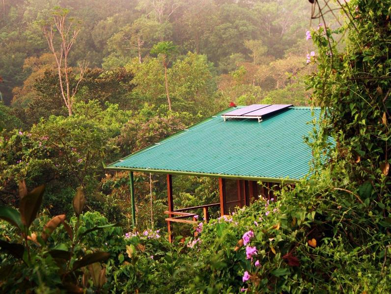 This solar powered home is surrounded by pristine jungle, birds, and wildlife