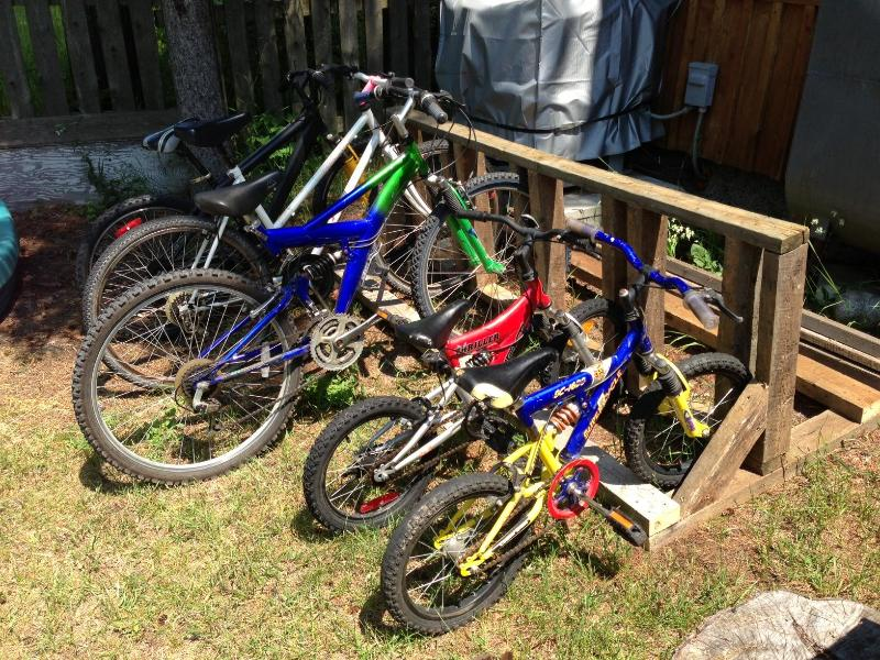Alquiler de bicicletas disponible