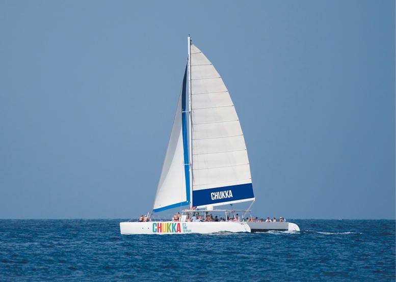 Dunn's River Climb and Catamaran Cruise