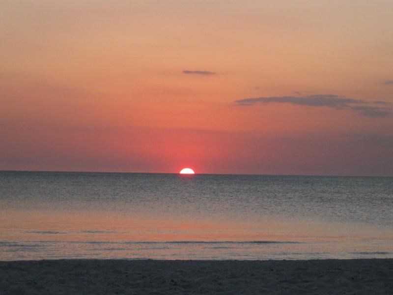 Gorgeous Gulf view sunsets every night.