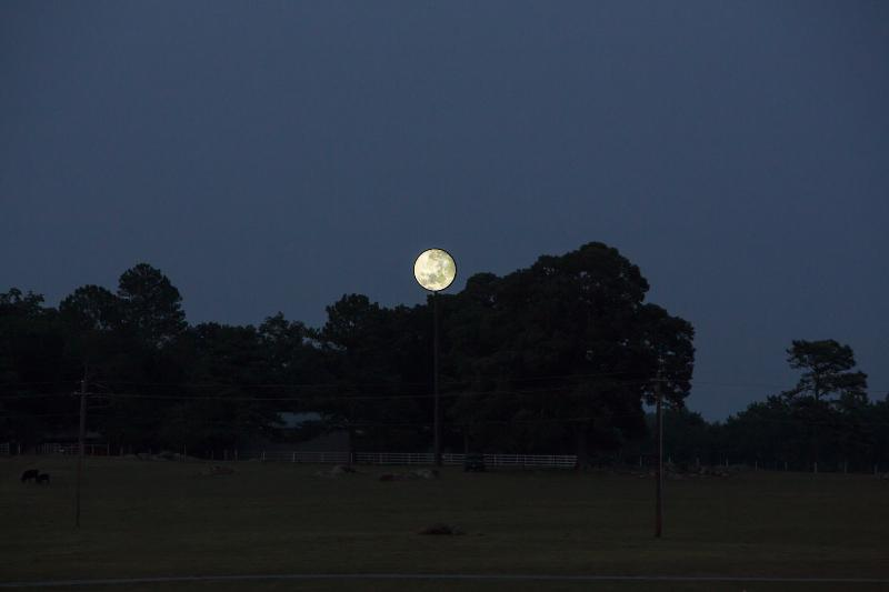 The Moon - you can see this historic landmark out the back of your rental home away from home