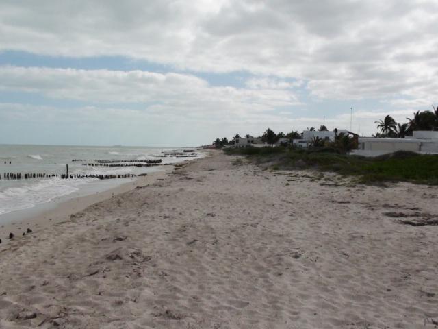 Beach facing east