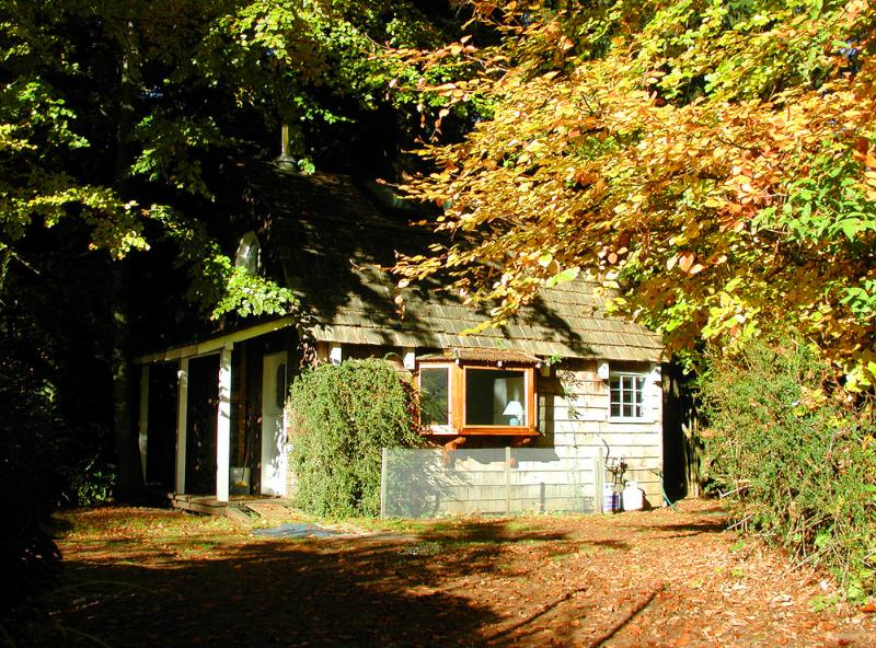 Las hojas de otoño en la cabaña