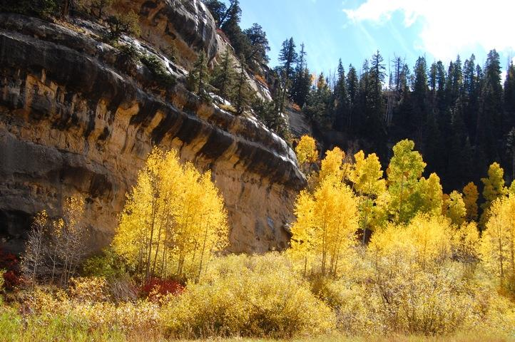 Cedar Mountain is beautiful in the fall about 45 minutes up the road