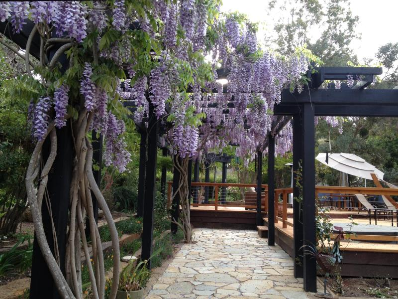 Guest House in Sunny Carmel Valley, holiday rental in Big Sur
