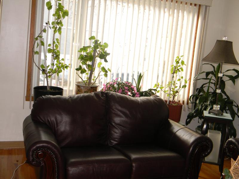 Exquisite and Spacious three bedroom duplex in Montreal, vacation rental in Montreal