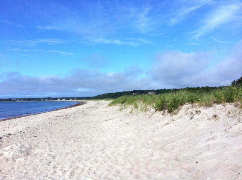 Nearby Beach (Long Beach next to Craigville Beach)