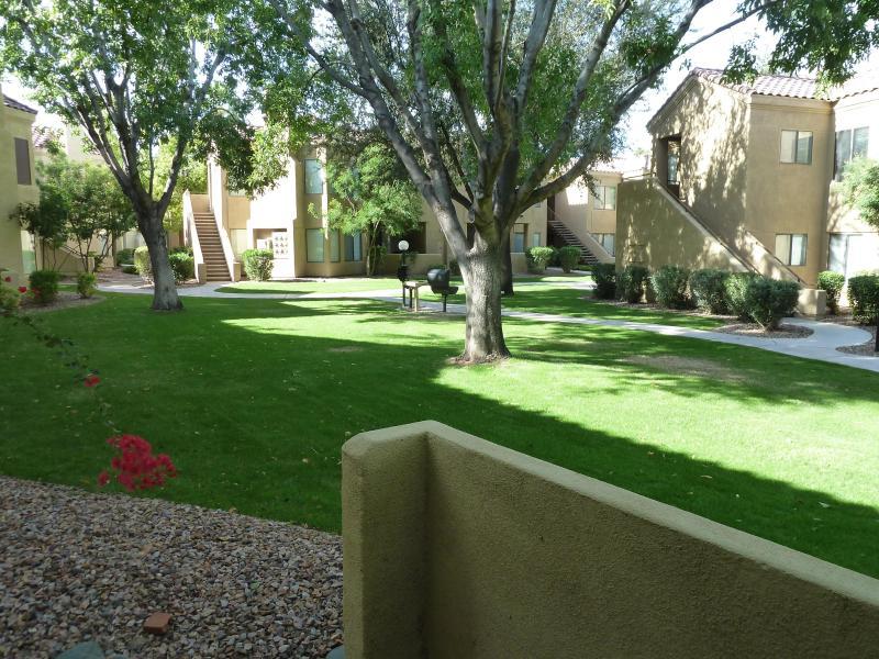 vue sur jardin de patio