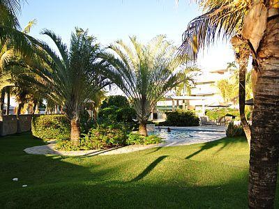 Pool view Palma Vista