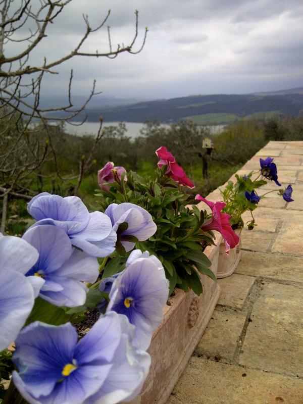 Toujours fleurs & des panoramas spectaculaires.
