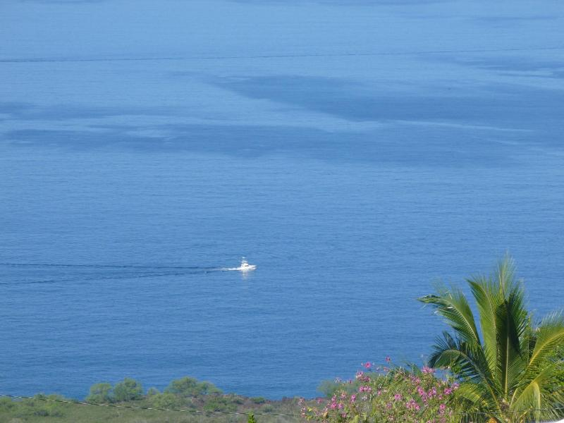 A fishing boat as seen from my house.