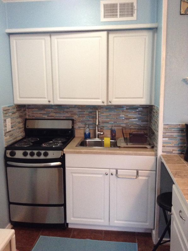 New stainless steel stove, sink