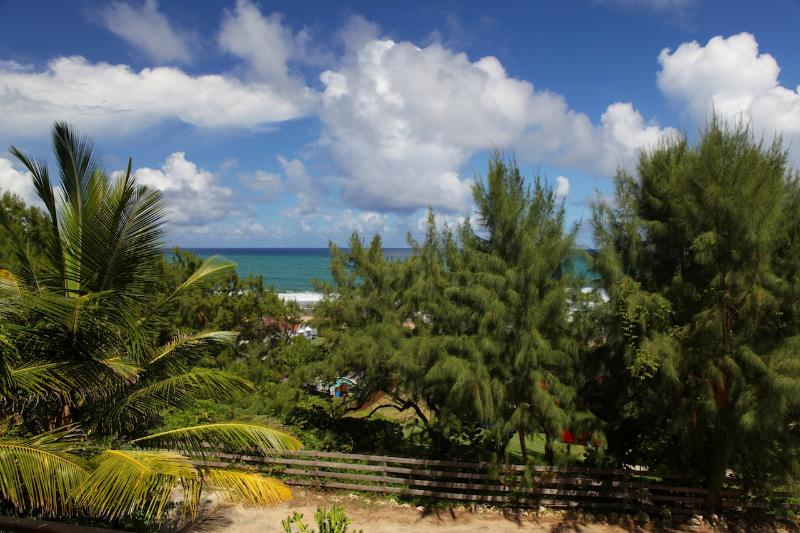 Panoramic Views of the East Coast