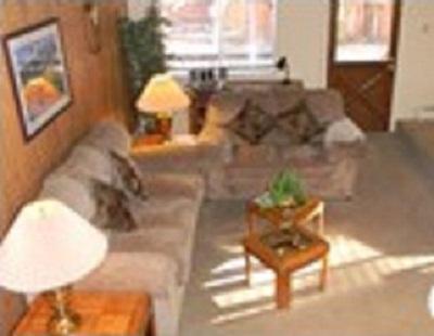 Família estilo Sala confortavelmente mobilados