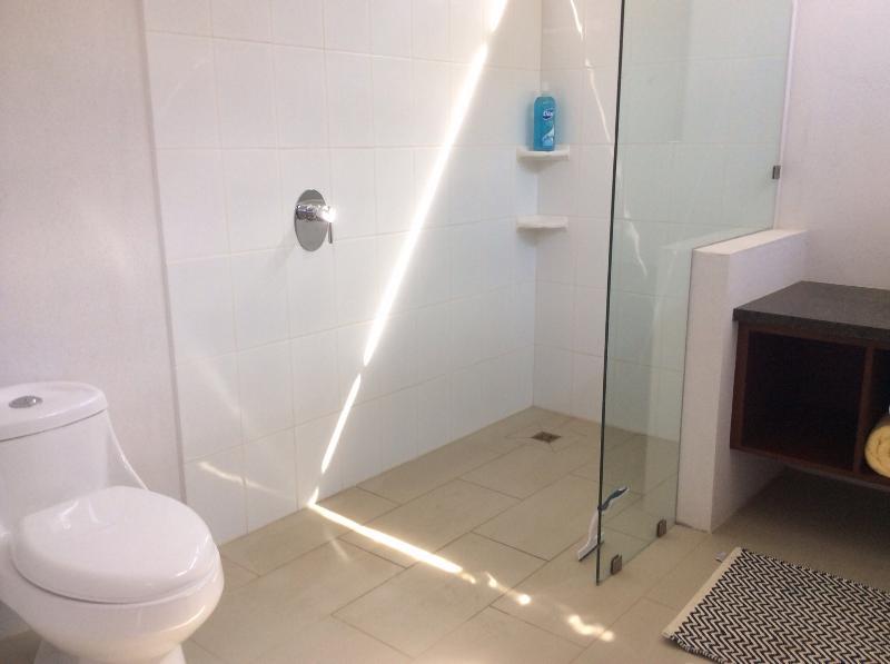 Master ensuite shower