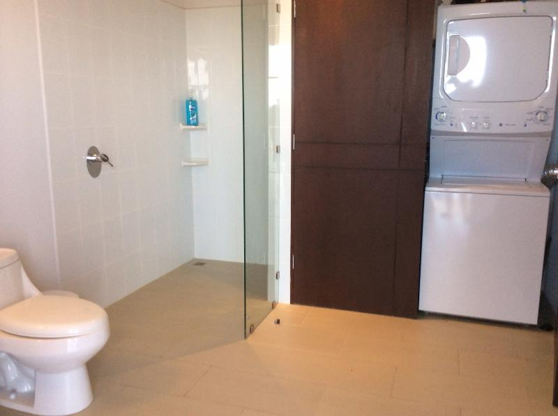 Lower level bathroom with washer and dryer