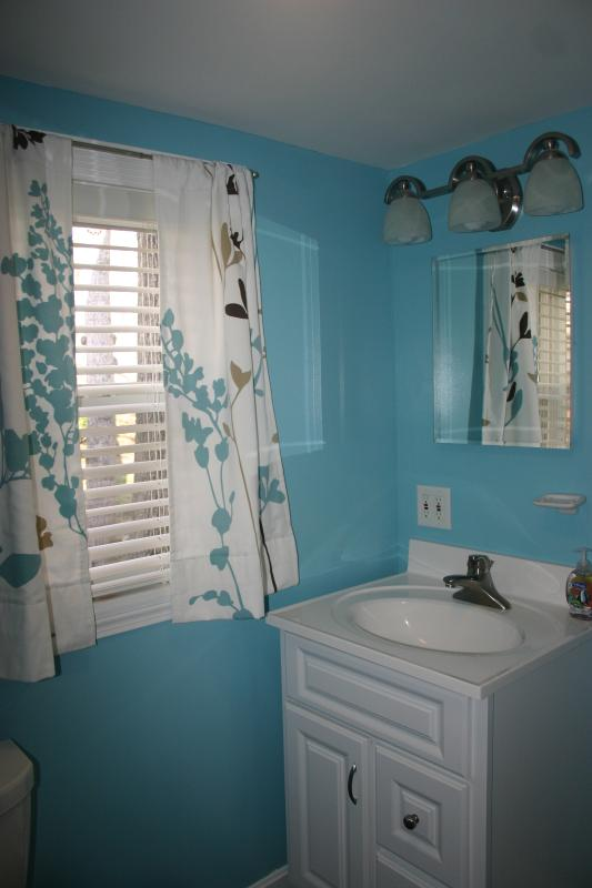 Bathroom features shower with ample storage