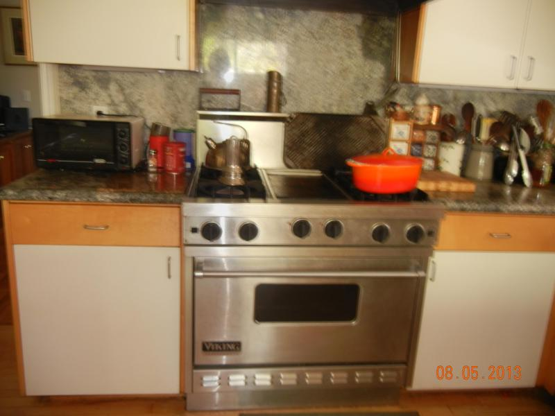 professionally equipped kitchen