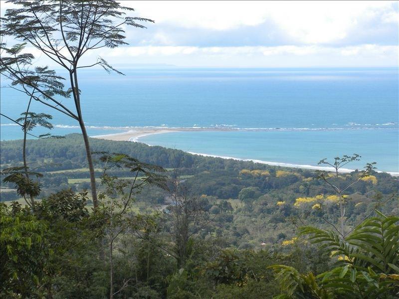 Utsikt över Whale Tail, Ballena Beach, Cano Island och Osa halvön är dagliga godsaker.