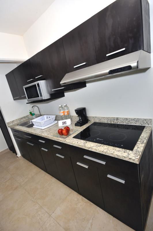 All apartments with vitroceramic stoves, microwave, fridge, freezer and coffe maker