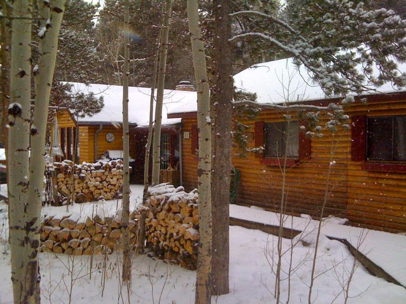 Charming Log Cabin for Peaceful Mountain Getaway!, alquiler vacacional en Nederland