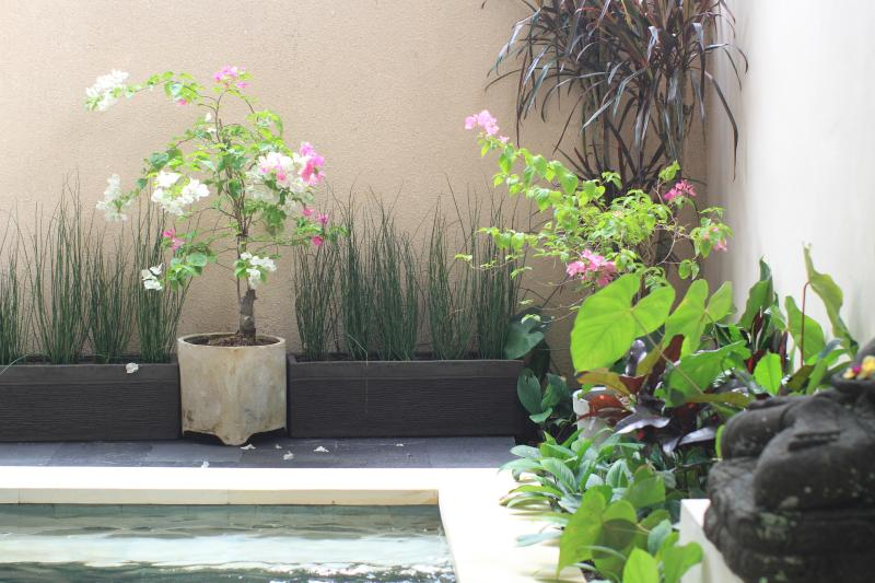 Jardins fleuris entourent la piscine