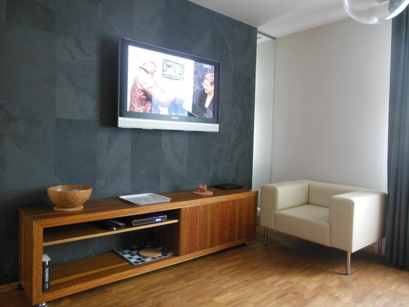 TV grand écran plat avec chaînes satellite et internet