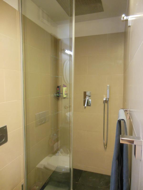 Douche WC et walk-in