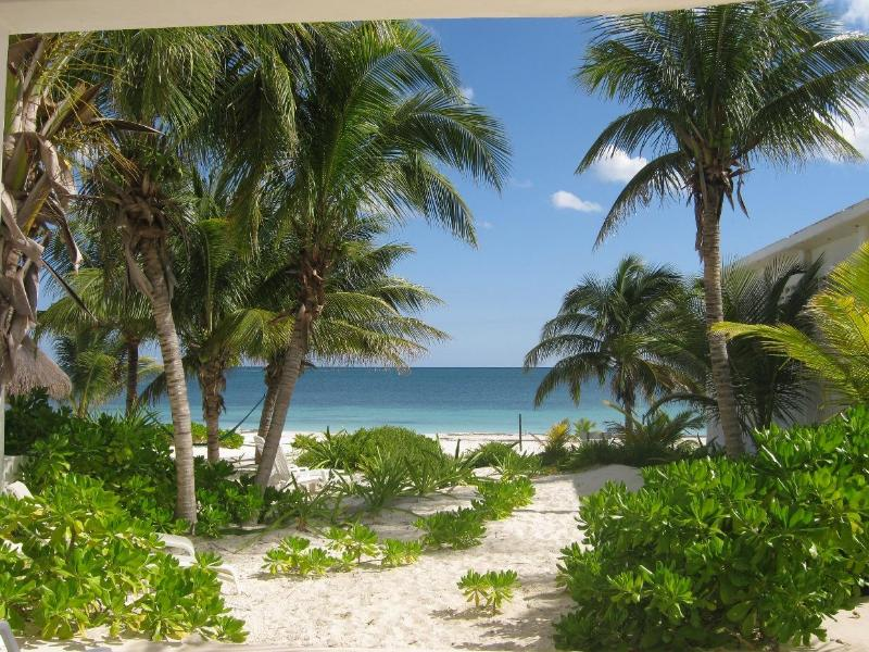 Beach Front Suites with a view of the beautiful Caribbean