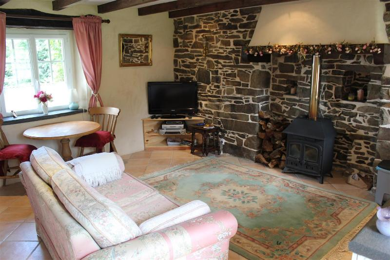 Living area with feature wall and woodburner