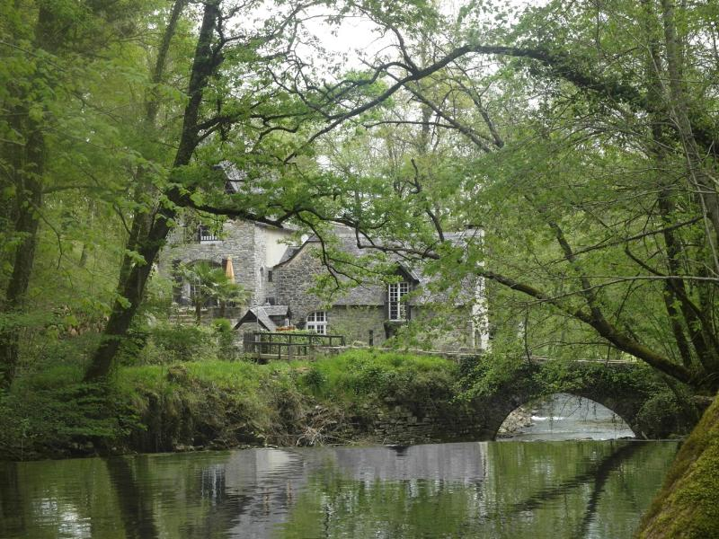 Private bridge and water mill. Enjoy trout fishing!