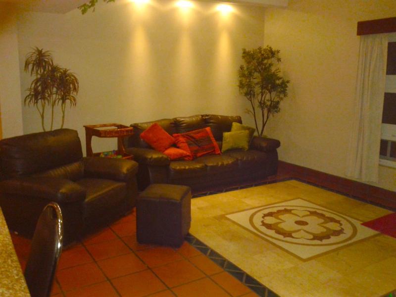 Salón sofá (cuero)