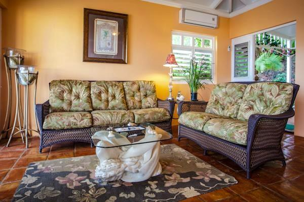 Living room has quiet A/C, palm leaf ceiling fan and an ocean view. Wi-Fi intenet with Wi-Fi printer
