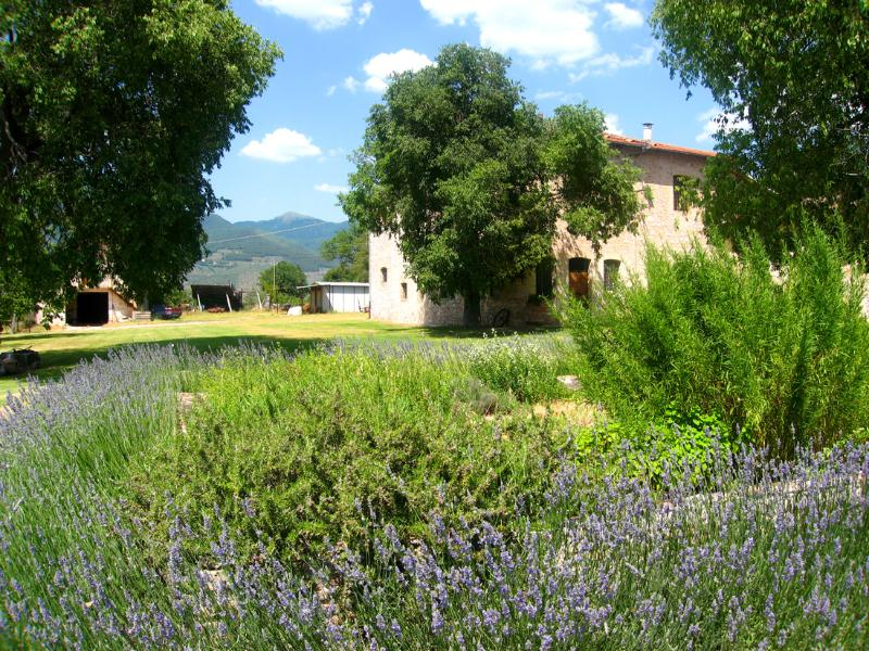 Sensationally beautiful grounds and farmhouse, containing 2 self-catering apartments