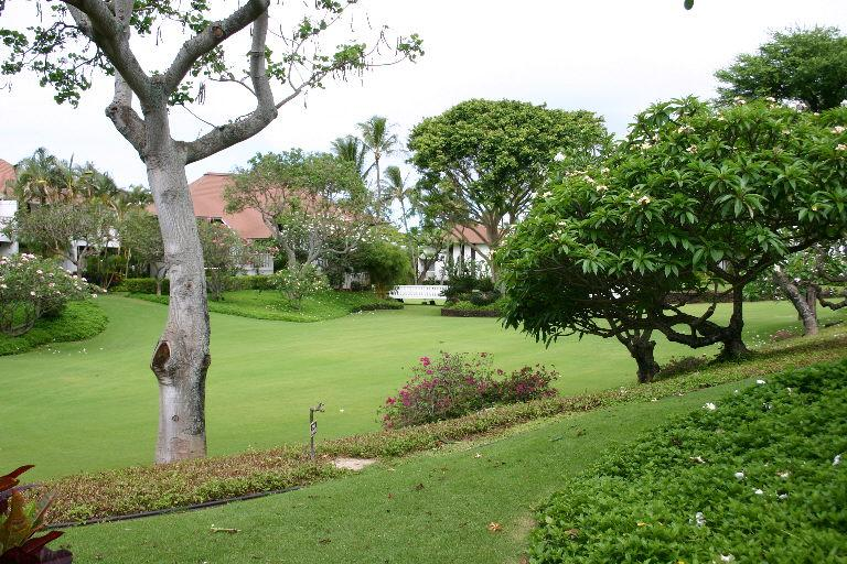 View from Lanai outside condo
