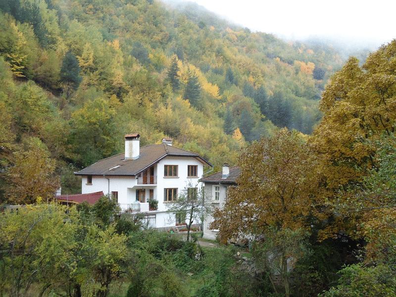 Villa  VITANOVA, vacation rental in Beden