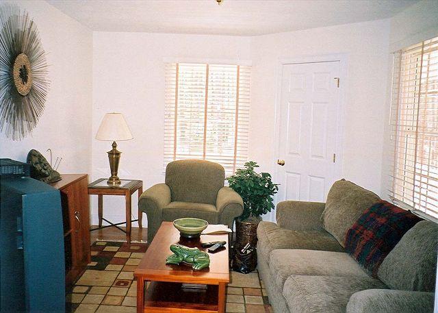 Main Level TV Room