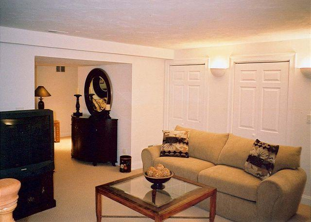Lower Level TV Room off of family room, queen sleep sofa