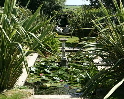 Pond in the beautiful gardens