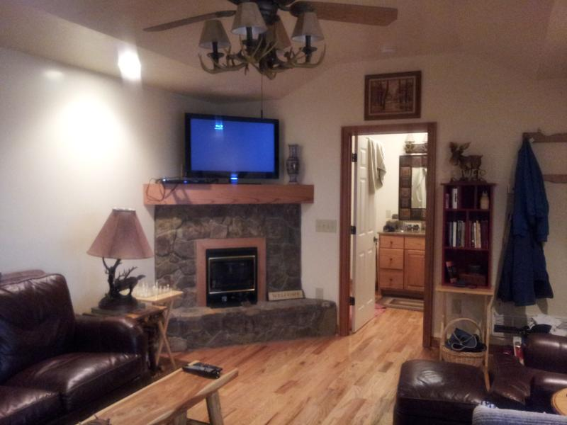 view of living room with gas log fire place
