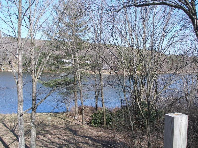 Sprintime vista do lago