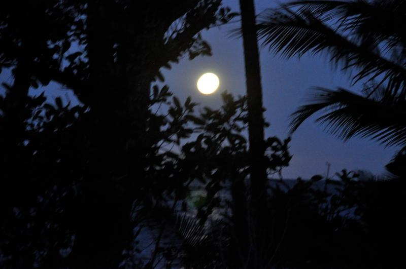 Sejala blue moon - amazing evenings on the beach under the stars as the moon rises