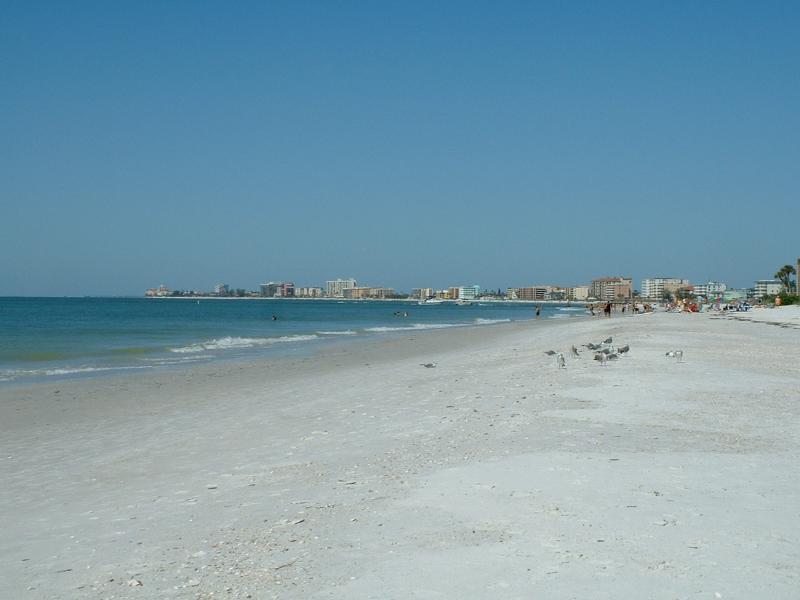 North view of Sunshine beach