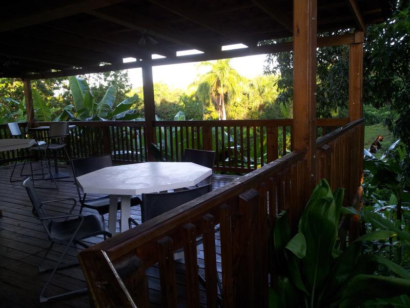 Spacious  Deck or Terrace