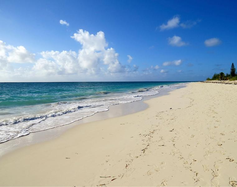 The 'Treehouse' is a 3 minute walk from one of the finest beaches on Grand Bahama Island