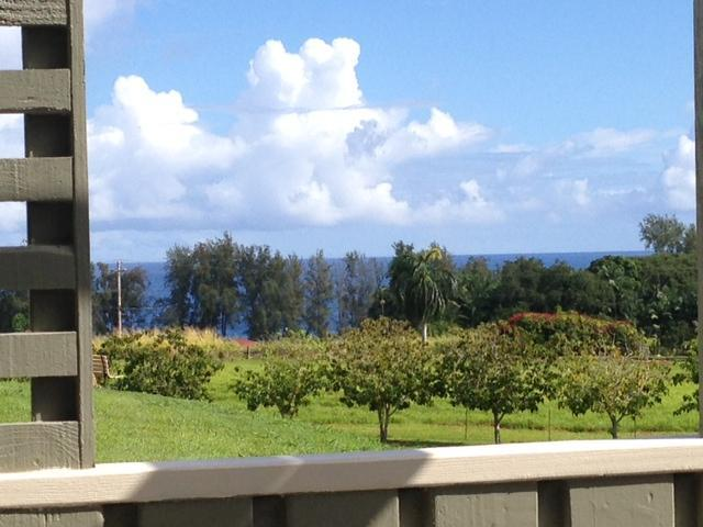 Vast ocean views from lanai.